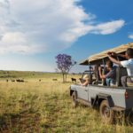 Game Drive in the highveld